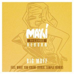 Big Muff - Feel What You Know (Sonik Temple Remix) [Nettwerk]