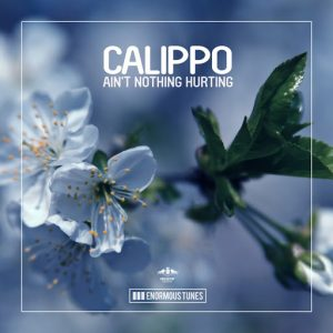 Calippo - Ain't Nothing Hurting [Enormous Tunes]