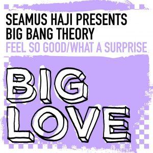 Seamus Haji pres. Big Bang Theory - Feel So Good - What A Surprise [Big Love]