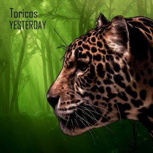 Toricos - Yesterday [Deep Strips]
