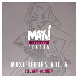 big-muff-maxi-reborn-vol-5-feel-what-you-know-ep-nettwerk