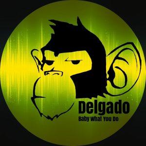 delgado-baby-what-you-do-monkey-junk