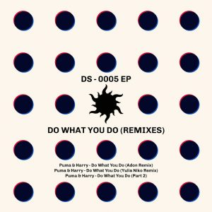 harry-do-what-you-do-remixes-deep-season