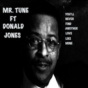 Mr.Tune feat. Donald Jones - You'll Never Find Another Love Like Mine [Dub&Boom]