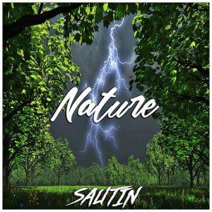 sautin-nature-label-mango-record