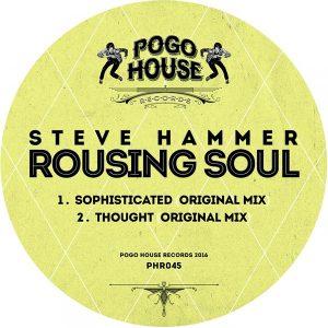 steve-hammer-rousing-soul-pogo-house-records