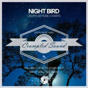 various-artists-night-bird-crumpled-sound