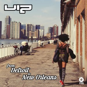 viz-from-detroit-to-new-orleans-ids