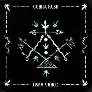 von-party-feat-naduve-cobra-kush-multi-culti
