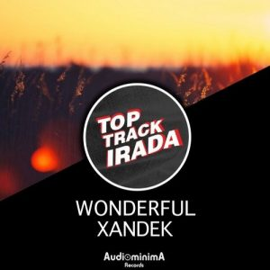 xandek-wonderful-audiominima-records
