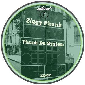 Ziggy Phunk - Phunk Da System [Editorial]