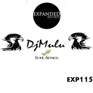 dj-mulu-soul-afrika-expanded