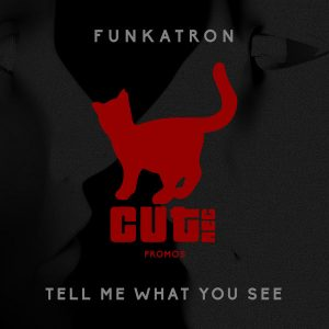 funkatron-tell-me-what-you-see-cut-rec-promos