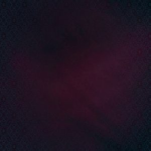 inkfish-secrets-of-s-inkfish-recordings