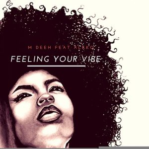 m-deeh-feeling-your-vibe-dasm-records