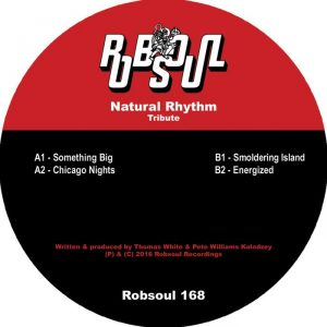 natural-rhythm-tribute-robsoul-france