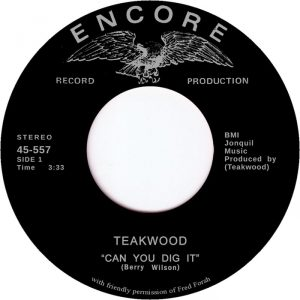 teakwood-can-you-dig-it-tramp-germany