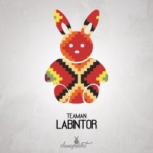 teaman-labintor-clumsyrabbit