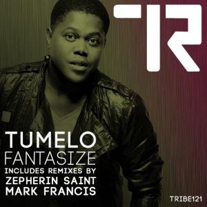 tumelo-fantasize-remixes-tribe-records