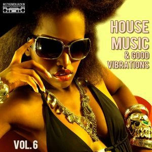 various-artists-house-music-good-vibrations-vol-6-instrumenjackin-records