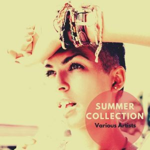 various-artists-summer-collection-onebigfamily-records