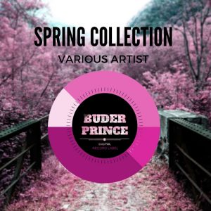 various-spring-collection-buder-prince-digital