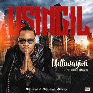 usingil-udliwayini-phushi-plan