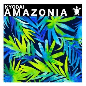 kyodai-amazonia-vida-records