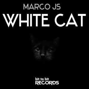 marco-js-white-cat-bit-to-bit