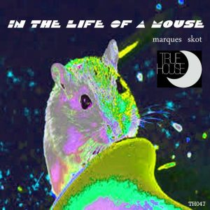marques-skot-in-the-life-of-a-mouse-true-house-la