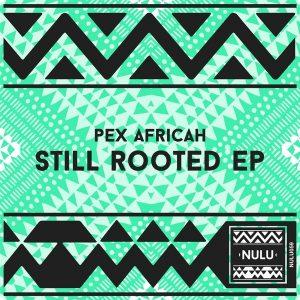 pex-africah-still-rooted-nulu
