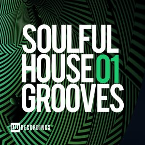 various-soulful-house-grooves-vol-01-lw-recordings