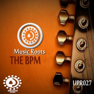 music-roots-the-bpm-nights-under-pressure-records-south-africa
