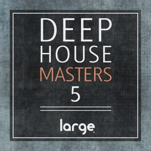 Various deep house masters 5 large music voiceinside for Deep house music